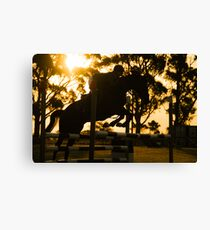 Jumping for Gold Canvas Print