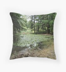 Lake, Rotary Park Throw Pillow