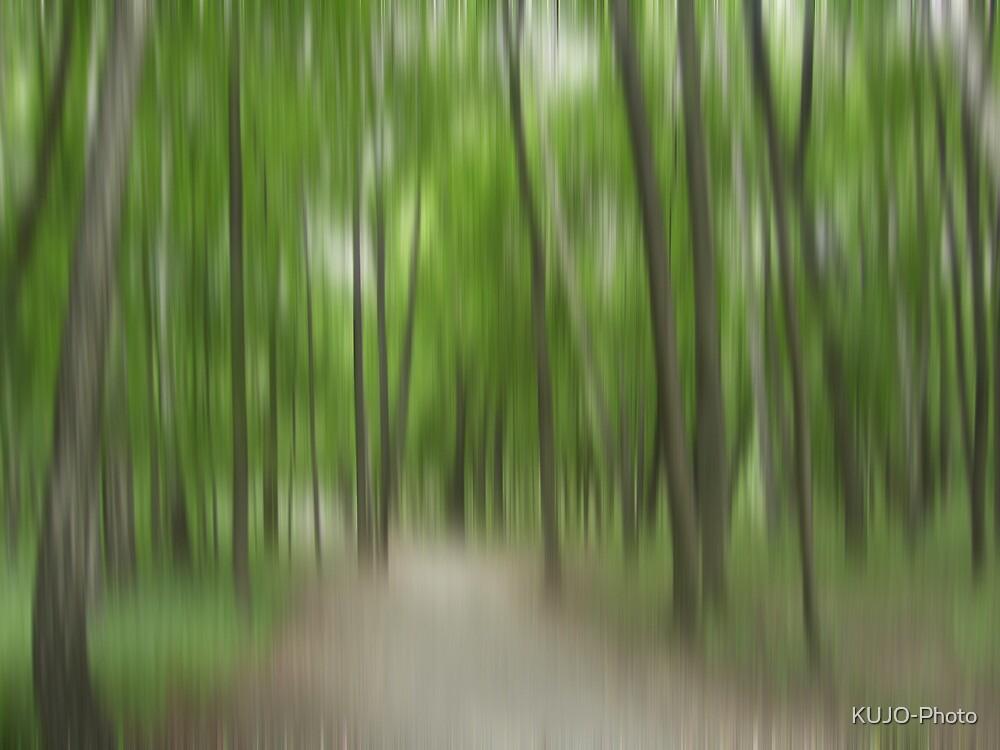 Forrest in Motion - green by KUJO-Photo