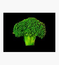 Broccoli Photographic Print