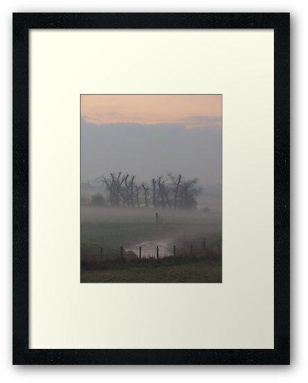 Misty Morning (2), Cheshire by KUJO-Photo