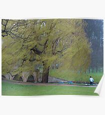 A stormy Day in Cambridge Poster
