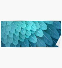 Blue & Yellow Macaw (wing) Poster