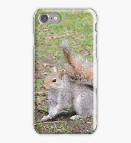 Perky iPhone Case/Skin