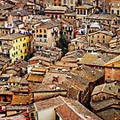 Siena Rooftops by Lynnette Peizer