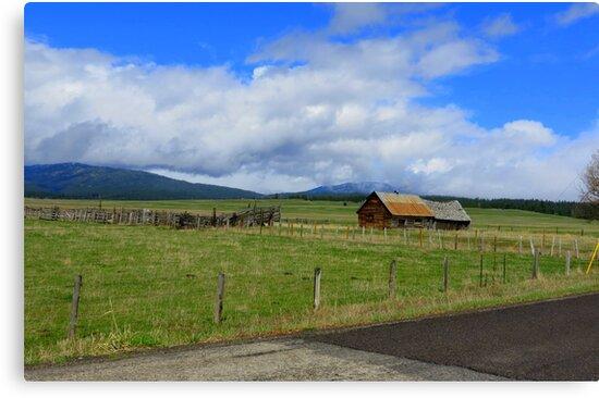 Idaho Open Range....Outside Cascade, Idaho by Diane Arndt
