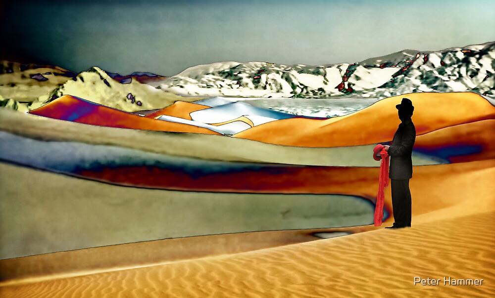 Dune Watcher by Peter Hammer