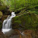 Holtwood Falls by Tim Devine