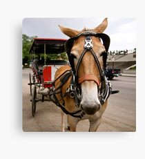 Need a Lift? Canvas Print