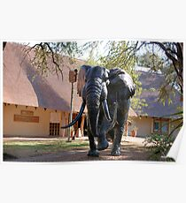 BEAUTIFUL ELEPHANT STATUE - The Kruger National Park Poster
