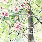 Blossom by Jenny Chang