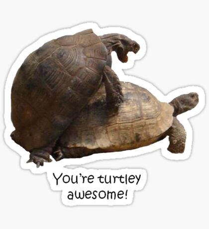 You're Turtley Awesome Sticker