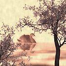 Japanese Lake by shalisa