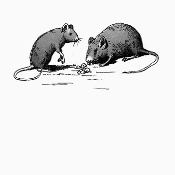 rats by chloebis