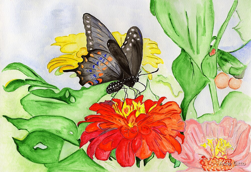 The New Creation….the Black Swallowtail Butterfly by Anne Gitto