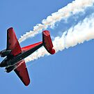 Big Red.......... with a twist and a turn by Brenda Dow