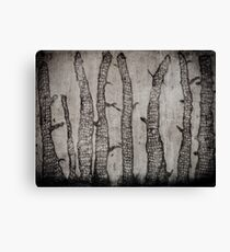 Winter Wood Canvas Print