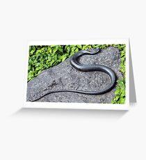 Rock Snake Greeting Card