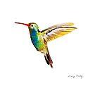 Hummingbird by Jenny Chang