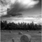 Clouds over Hayrolls  by Wayne King