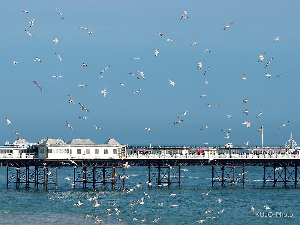 Palace Pier, Brighton, England by KUJO-Photo