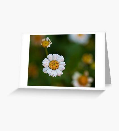 A simple pleasure Greeting Card