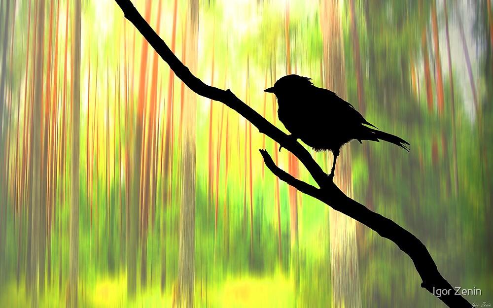 Spring Colors by Igor Zenin