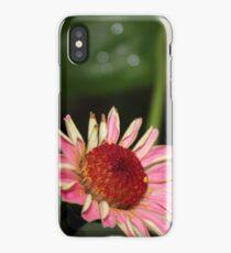 Fallen Zinnia iPhone Case
