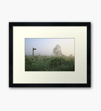 Foggy Directions Framed Print
