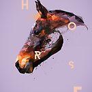Broken Horse by roxycolor