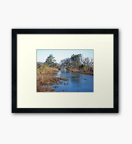 Tidal Creek - Outer Banks North Carolina Framed Print