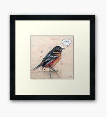 A Bird for Kurt Framed Print