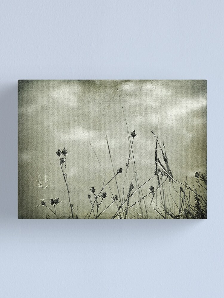 Alternate view of My heart is floating away Canvas Print