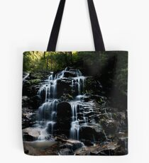 Sylvian Falls - Valley of the Waters Tote Bag