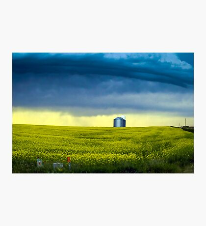 Alberta Photographic Print