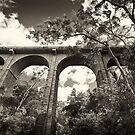 Knapsack Viaduct by Dilshara Hill