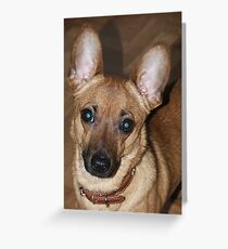 The Green Eyed Monster Greeting Card