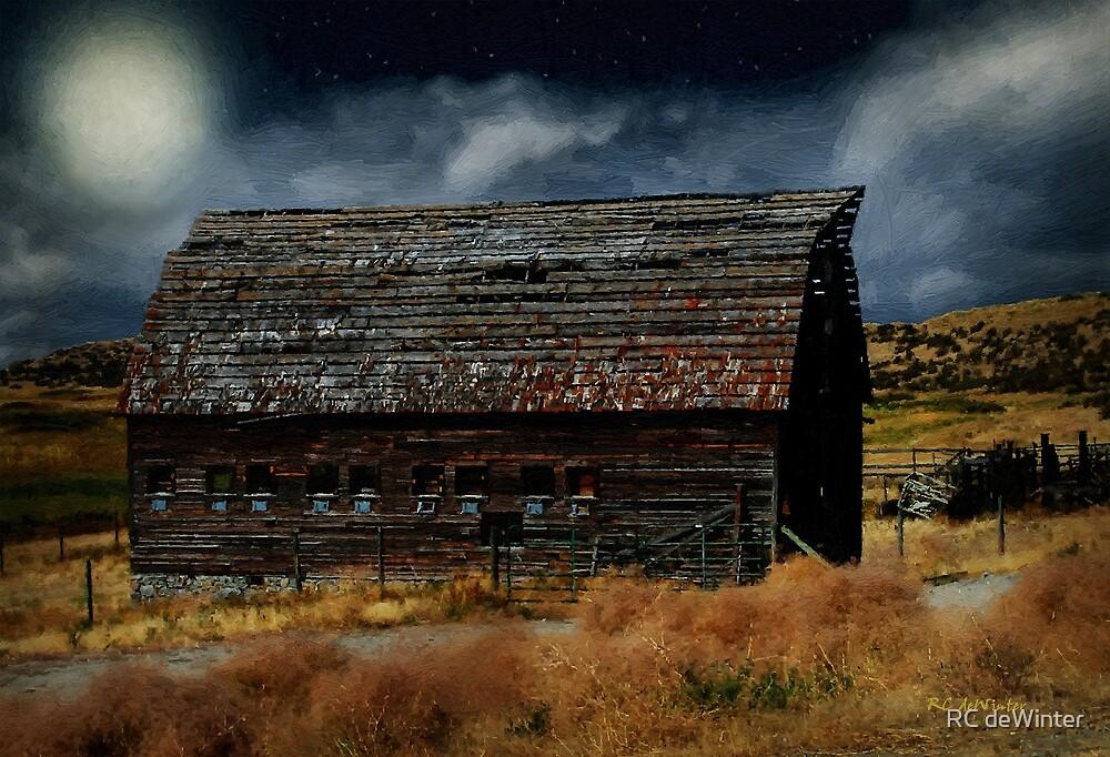 Moody Moon by RC deWinter