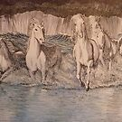 Storm Gallop by Sally Sargent