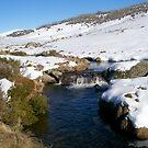 Creek Near Perisher Valley Country  NSW by Kym Bradley