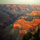 Grand Canyon at Sunset by Peter Hammer