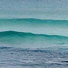 Esperance Canvas - Western Australia by Bev Woodman
