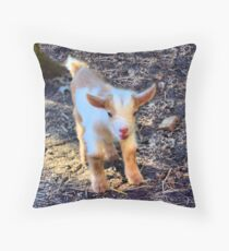 Two Day Old Butterscotch Throw Pillow