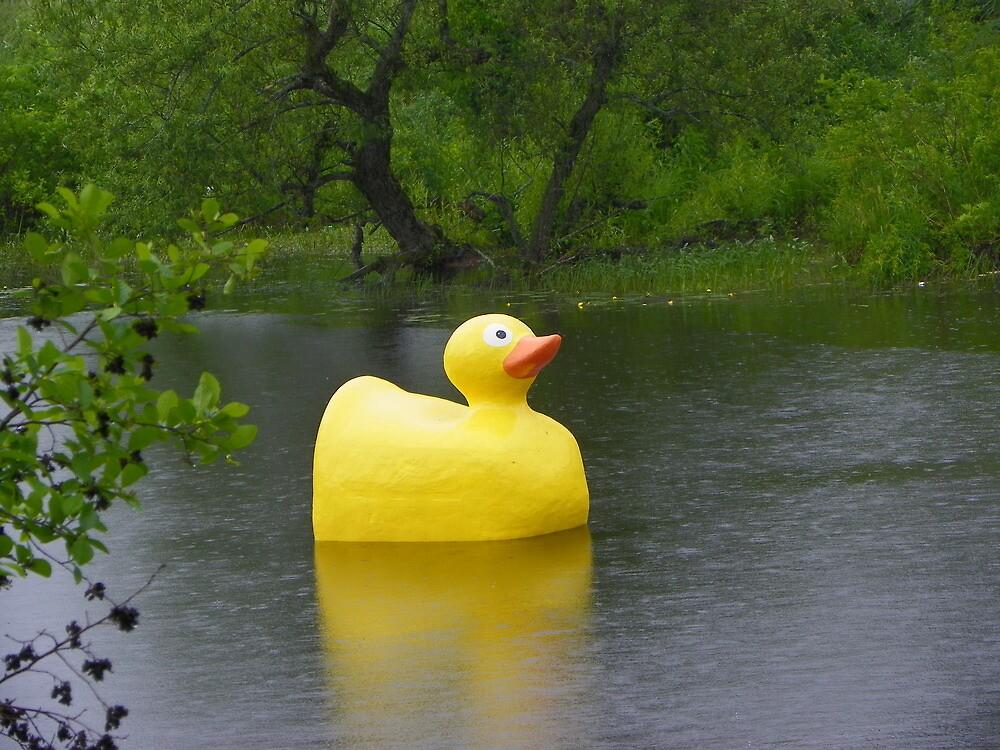 Rubber ducky by irmajxxx