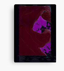 USGS Topo Map Washington State WA Birch Point 240063 1952 24000 Inverted Canvas Print