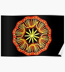 Wheel of Yarn Poster