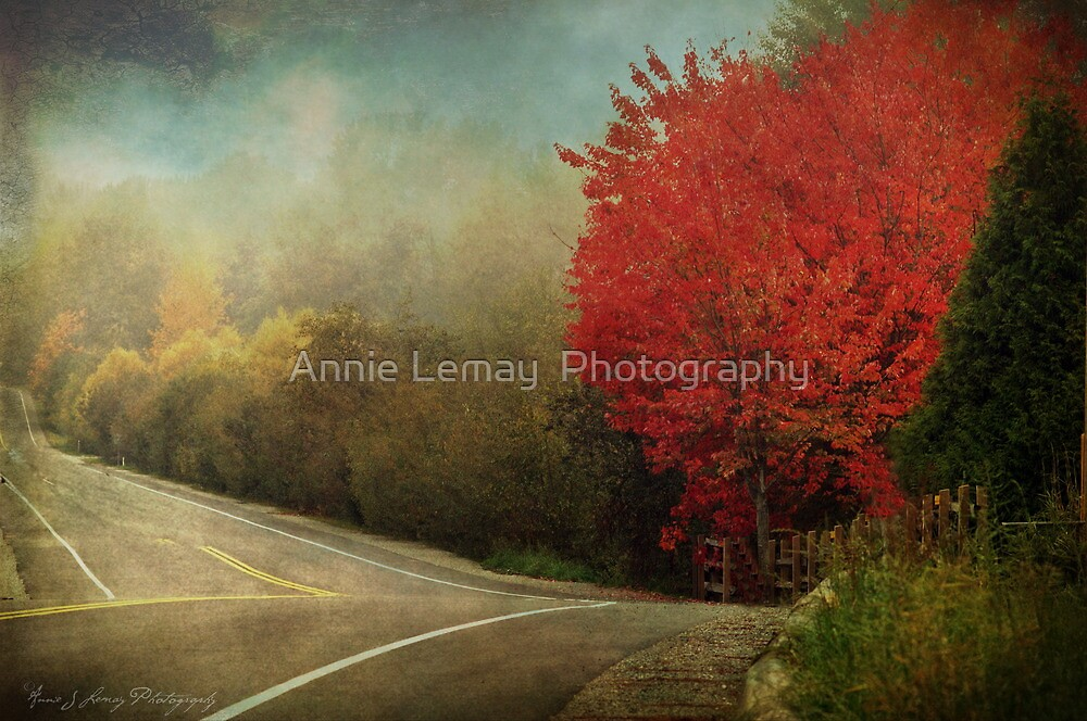 Living  by Annie Lemay  Photography