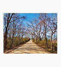 Lone road Photographic Print