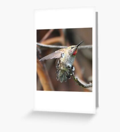 Ooh That Feels So Good! Greeting Card