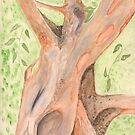 Cinnamon Tree  by Anne Gitto